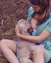 Nursing her lamb