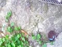 Webcam - Cait - Loves her dog yahoocam stickam cam4 sheets dog