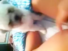 very big dog fuck little girl