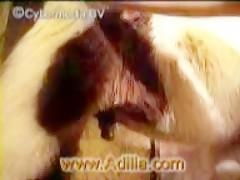 Inke - So Deep zooskool.com momiche pravi svirka na kuche