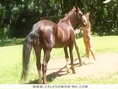 Caledonian - Anal Cum Squirt