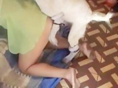 madura rubia intentando con el perro