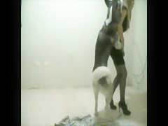 zorrita montada por can
