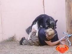 Japanese girl forced dog sex