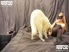 Pug Dog Licks Girl Pussy & Tits On Webcam