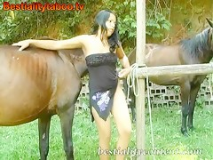 Horse Natasha 01