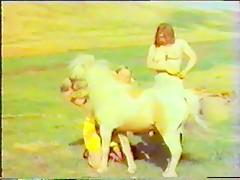 Horse sex Power
