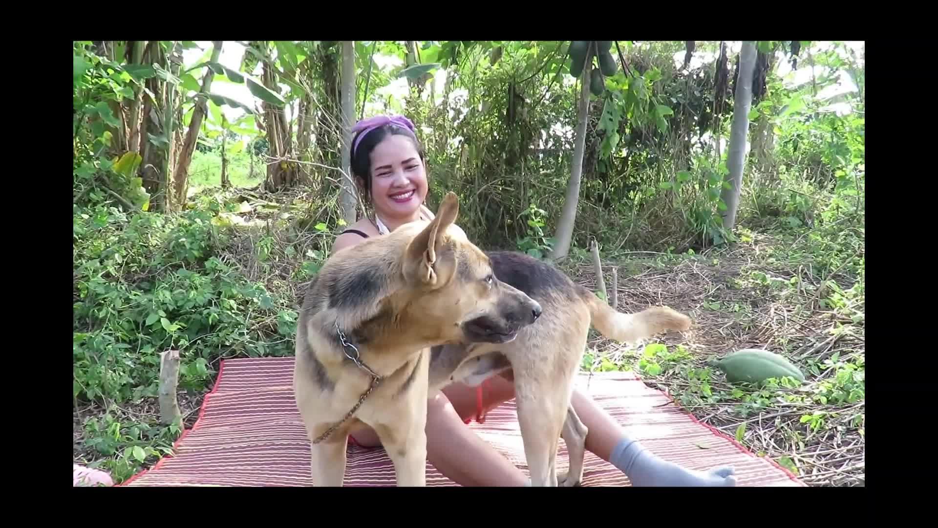Dog porn asian Asian Dog